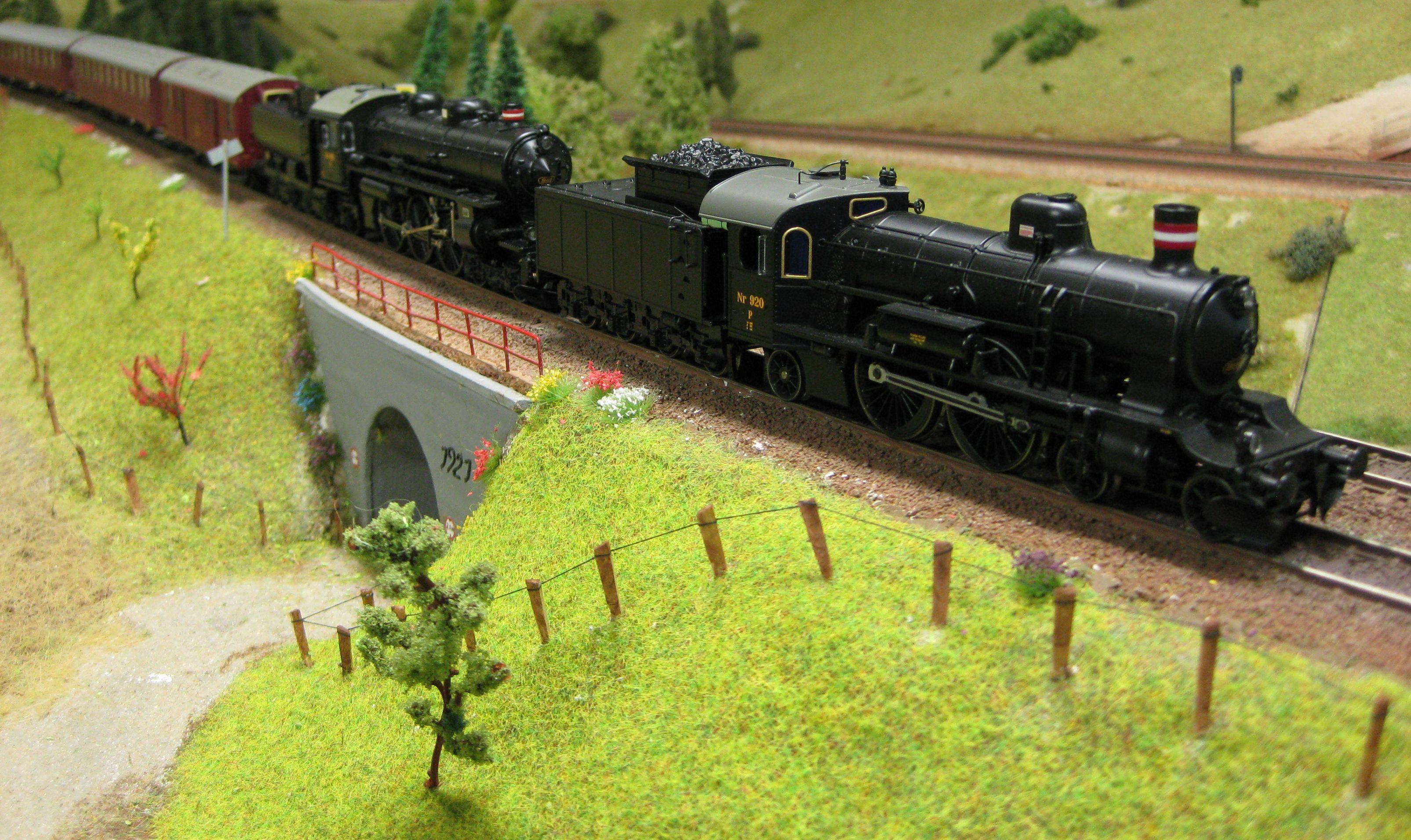 Viadukt med eksprestog